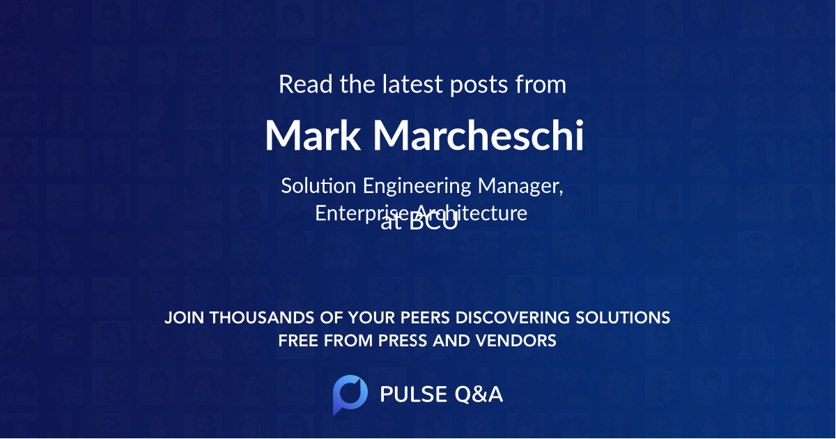 Mark Marcheschi