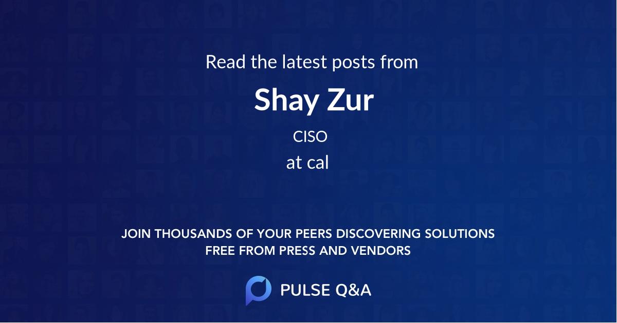 Shay Zur